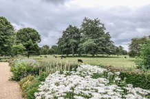 NT_The_Vyne_15July2020-29