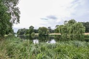 NT_The_Vyne_15July2020-69