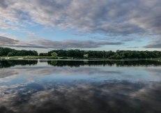 Richmond_Park_13July2020-19
